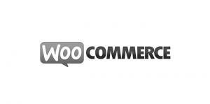 woocommerce-1.png